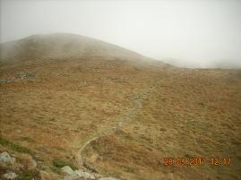 DSCN1532